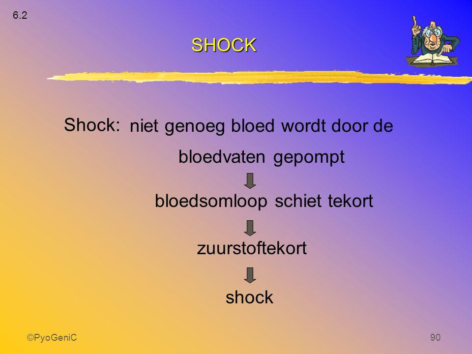 niet genoeg bloed wordt door de bloedvaten gepompt