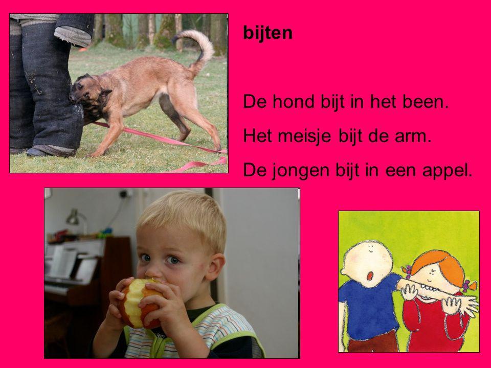 bijten De hond bijt in het been. Het meisje bijt de arm. De jongen bijt in een appel.