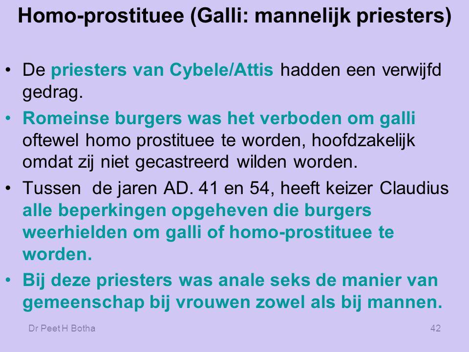 Homo-prostituee (Galli: mannelijk priesters)