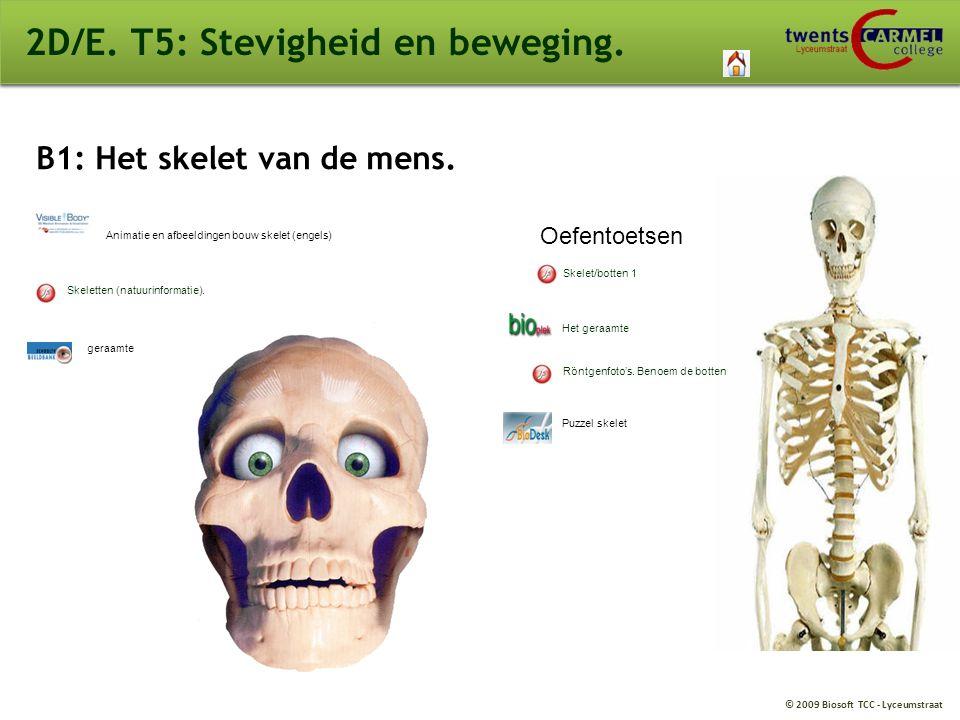 2D/E. T5: Stevigheid en beweging.