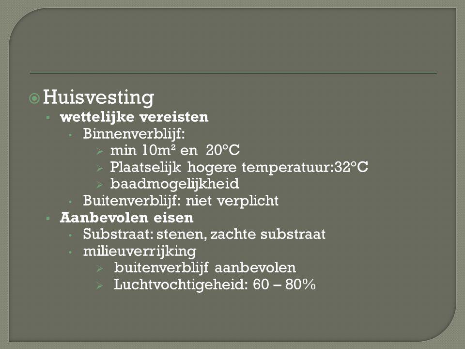 Huisvesting wettelijke vereisten Binnenverblijf: min 10m² en 20°C