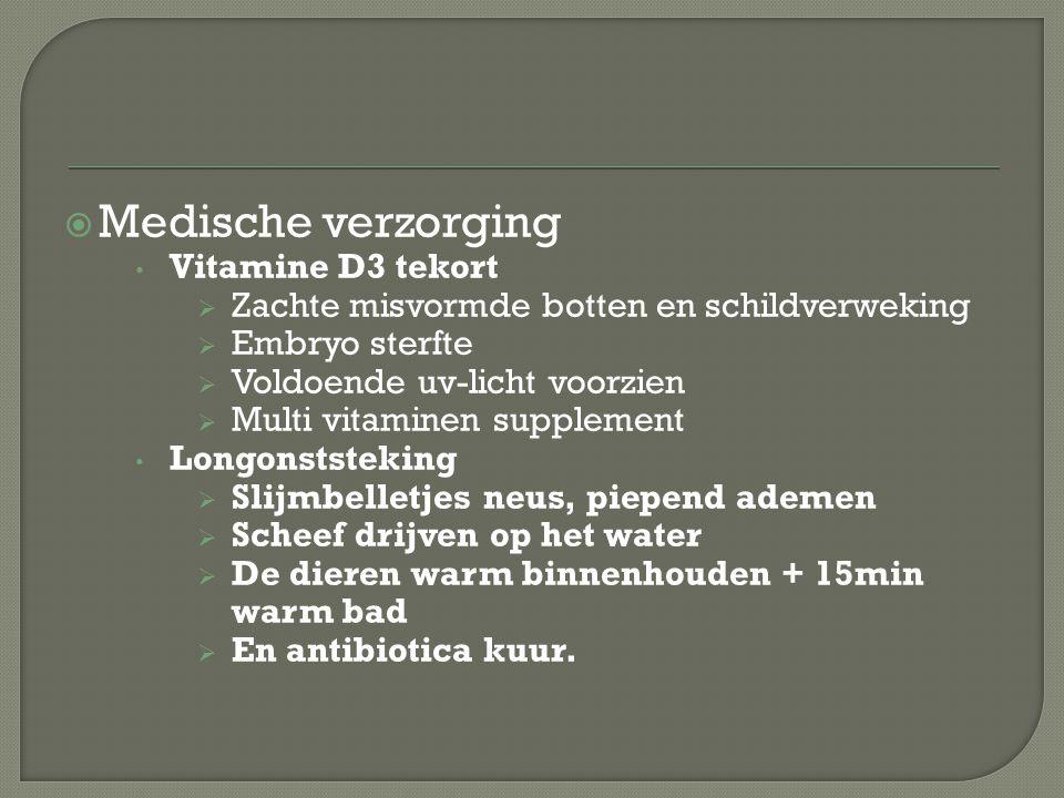 Medische verzorging Vitamine D3 tekort