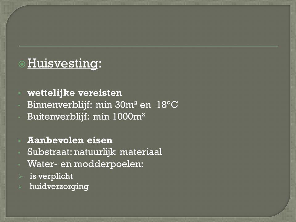 Huisvesting: wettelijke vereisten Binnenverblijf: min 30m² en 18°C