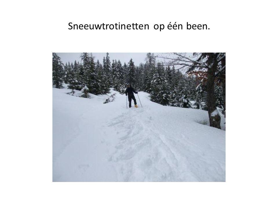 Sneeuwtrotinetten op één been.