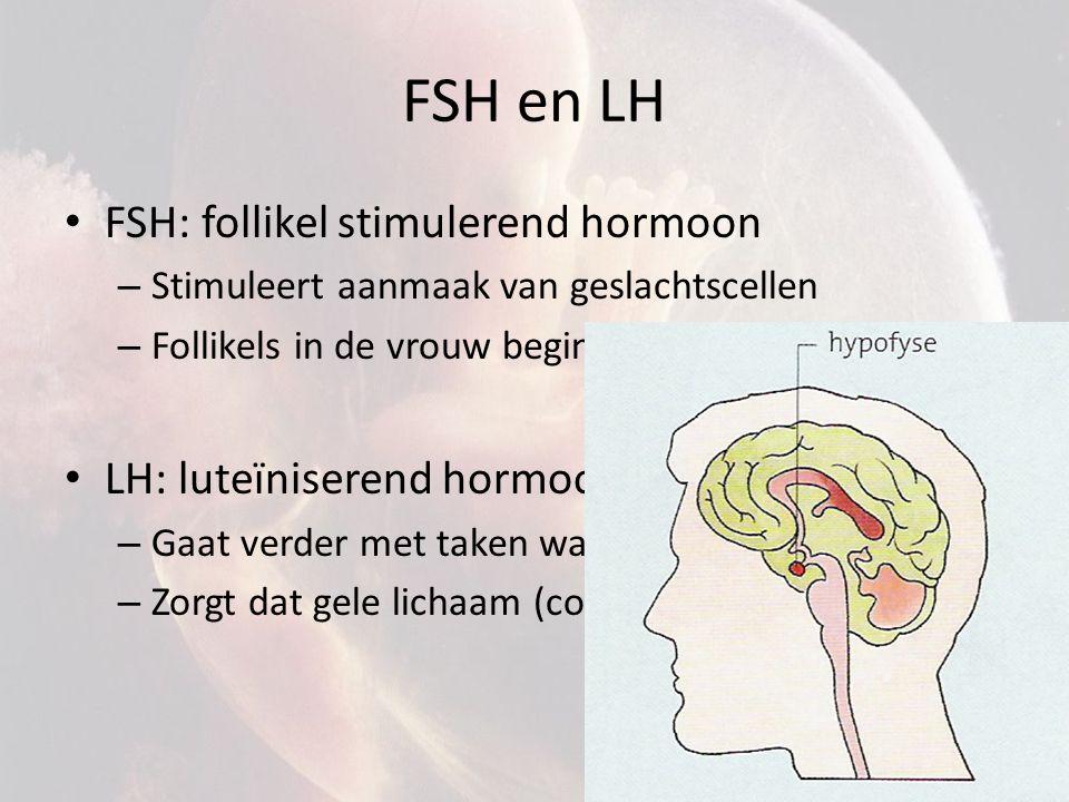 FSH en LH FSH: follikel stimulerend hormoon LH: luteïniserend hormoon