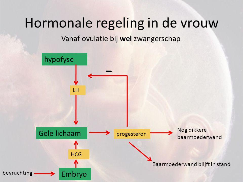 Hormonale regeling in de vrouw