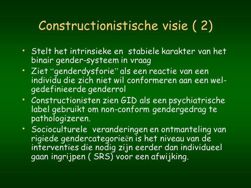 Constructionistische visie ( 2)