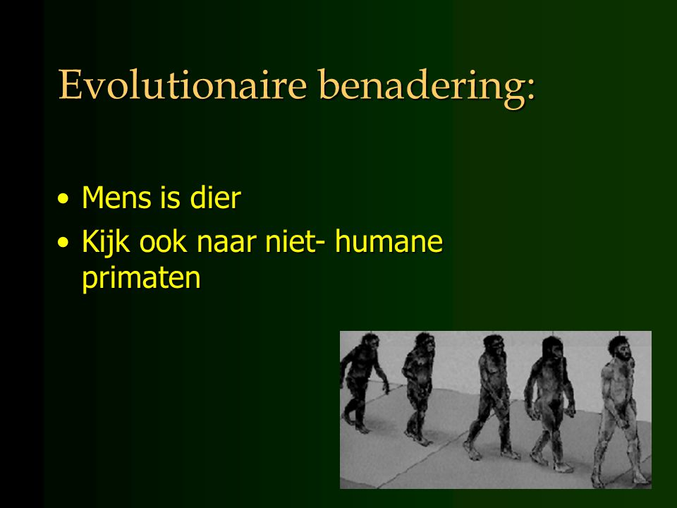 Evolutionaire benadering: