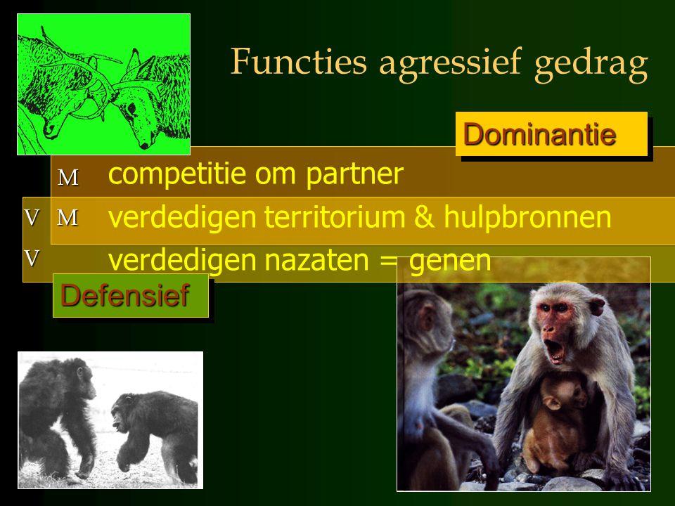 Functies agressief gedrag