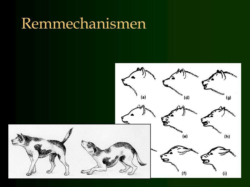 Remmechanismen 4-4-2017 13:58.