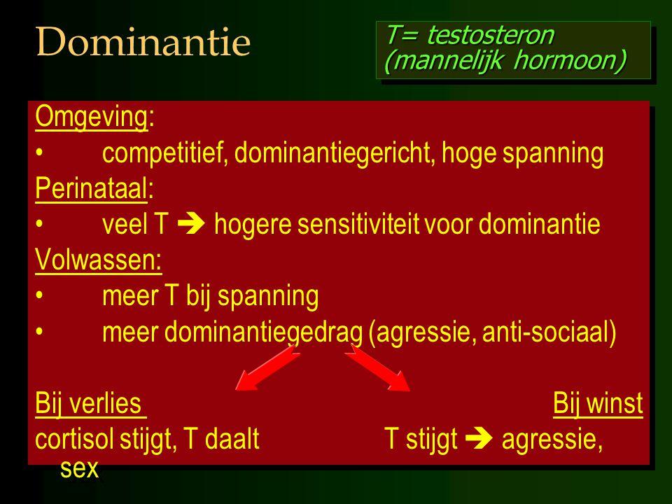 Dominantie Omgeving: competitief, dominantiegericht, hoge spanning