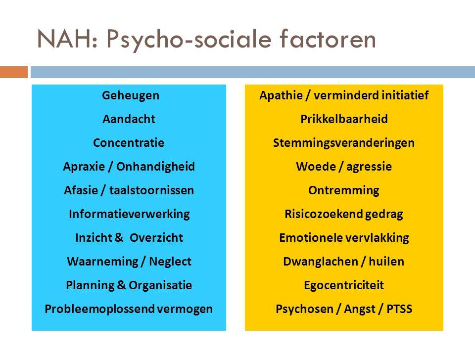 NAH: Psycho-sociale factoren