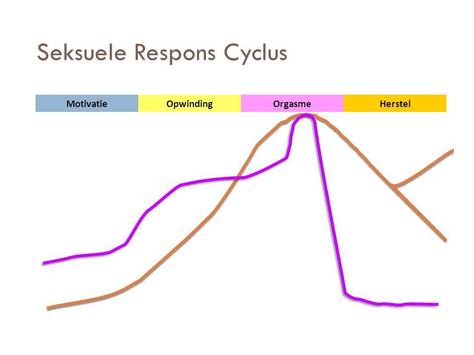 Seksuele Respons Cyclus