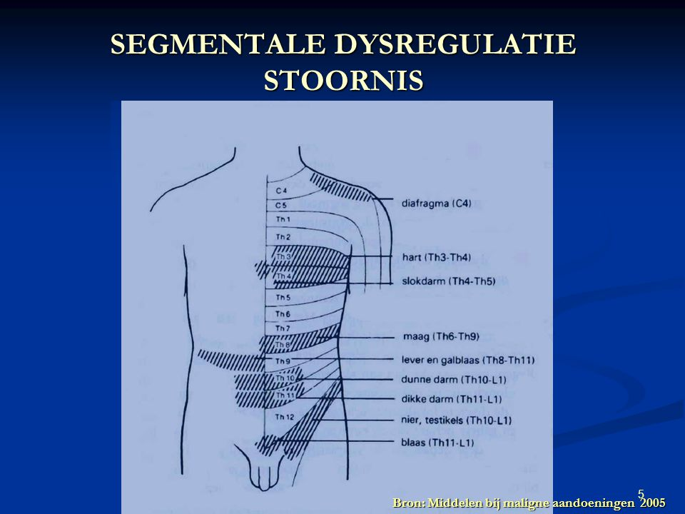 SEGMENTALE DYSREGULATIE STOORNIS