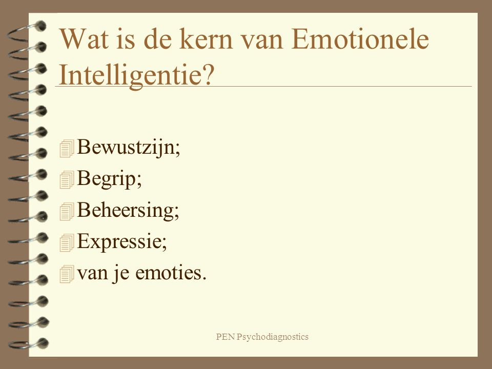 Wat is de kern van Emotionele Intelligentie
