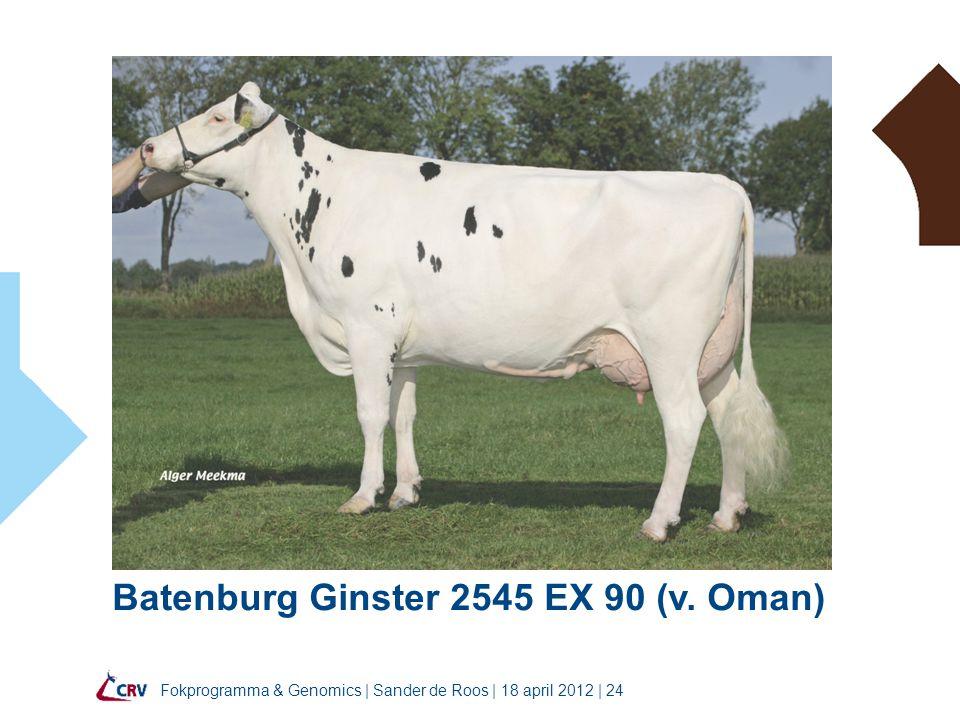 Batenburg Ginster 2545 EX 90 (v. Oman)