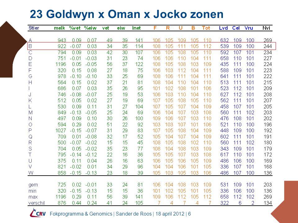 23 Goldwyn x Oman x Jocko zonen