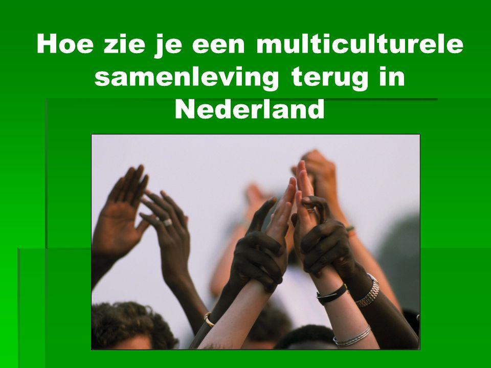 Hoe zie je een multiculturele samenleving terug in Nederland