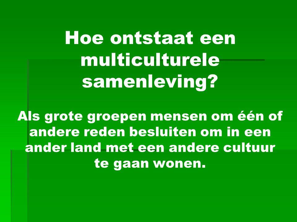 Hoe ontstaat een multiculturele samenleving