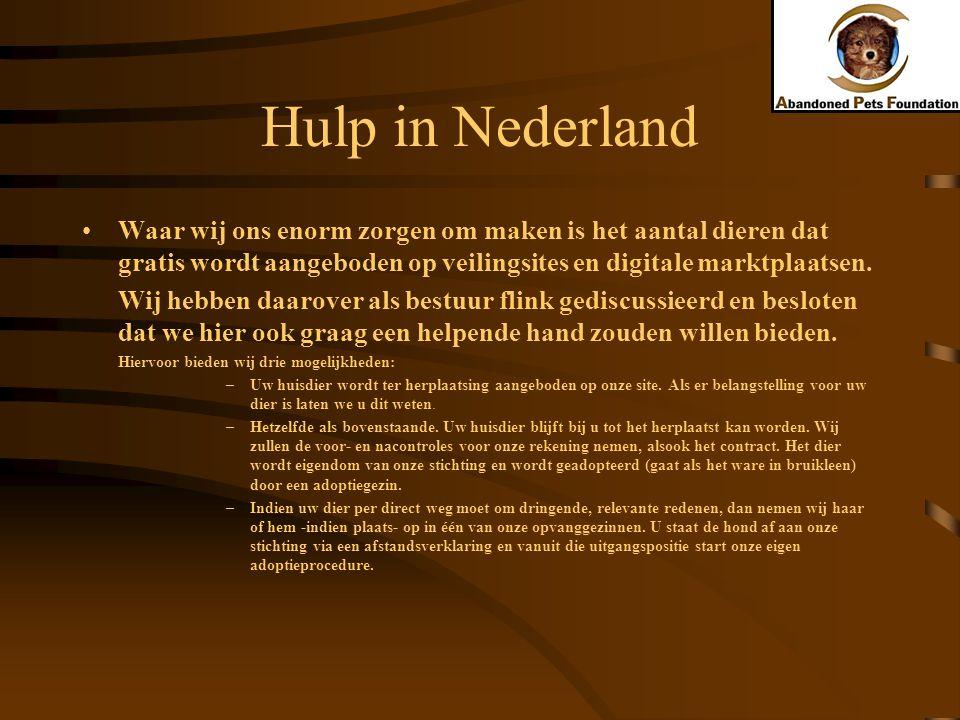 Hulp in Nederland Waar wij ons enorm zorgen om maken is het aantal dieren dat gratis wordt aangeboden op veilingsites en digitale marktplaatsen.