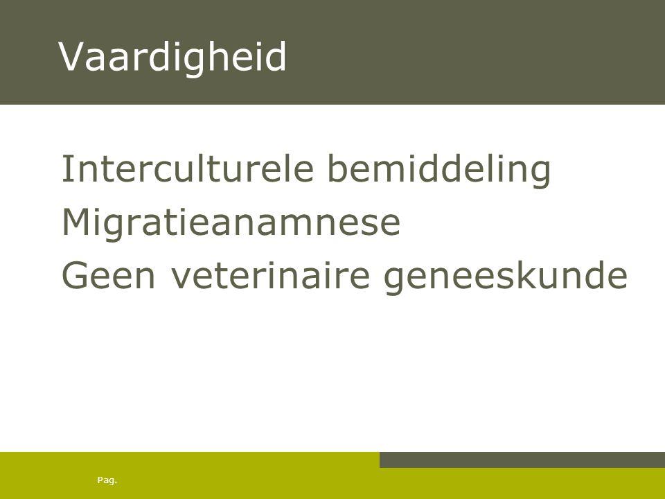 Vaardigheid Interculturele bemiddeling Migratieanamnese