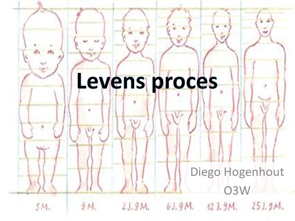Levens proces Diego Hogenhout O3W