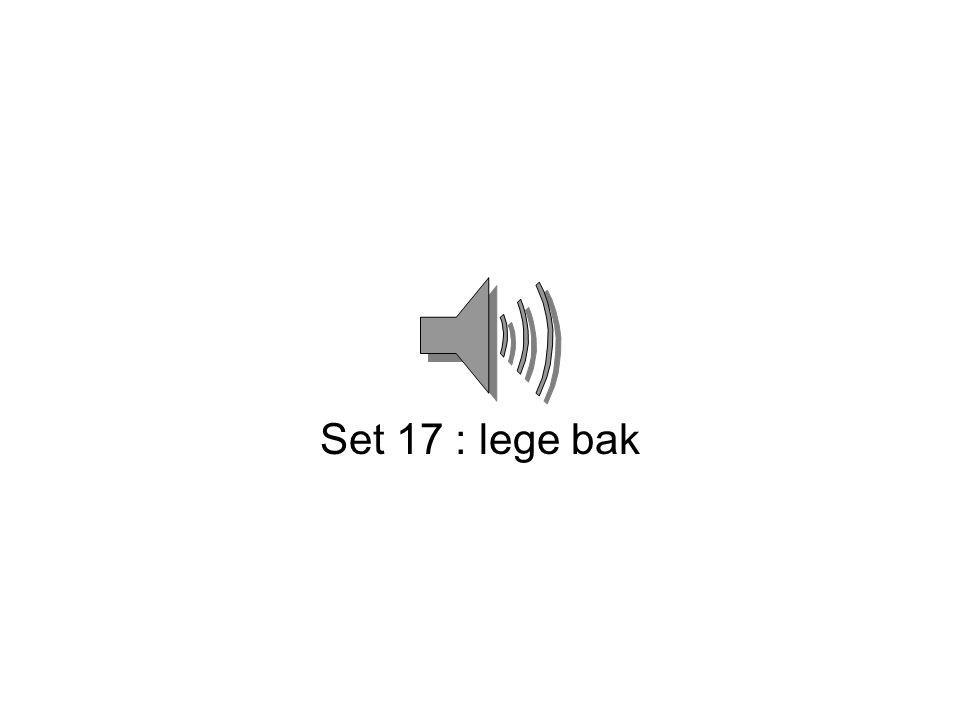 Set 17 : lege bak