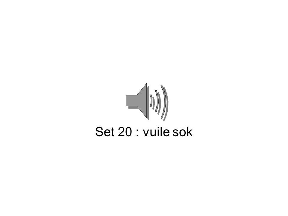 Set 20 : vuile sok