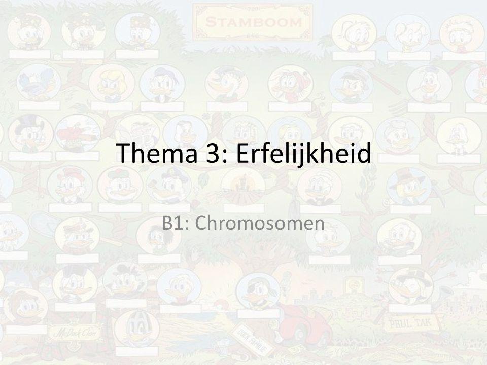 Thema 3: Erfelijkheid B1: Chromosomen