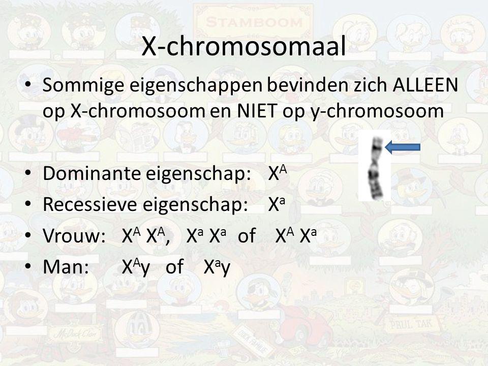 X-chromosomaal Sommige eigenschappen bevinden zich ALLEEN op X-chromosoom en NIET op y-chromosoom. Dominante eigenschap: XA.