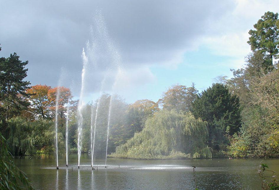 Dit is de fontijn in het Wilhelminapark