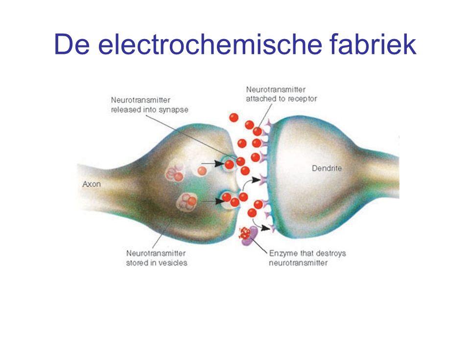 De electrochemische fabriek