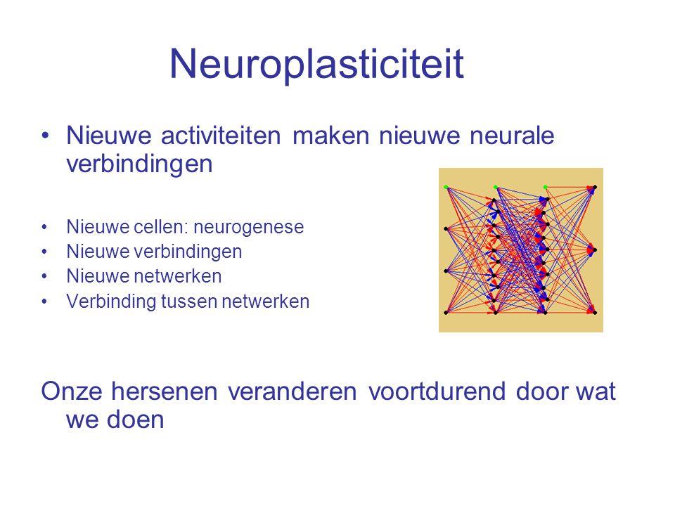 Neuroplasticiteit Nieuwe activiteiten maken nieuwe neurale verbindingen. Nieuwe cellen: neurogenese.