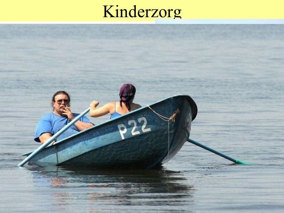 Kinderzorg © 2012 JP van de Sande RuG. Bij dieren: temperatuur, voedsel, veiligheid, dingen voordoen.