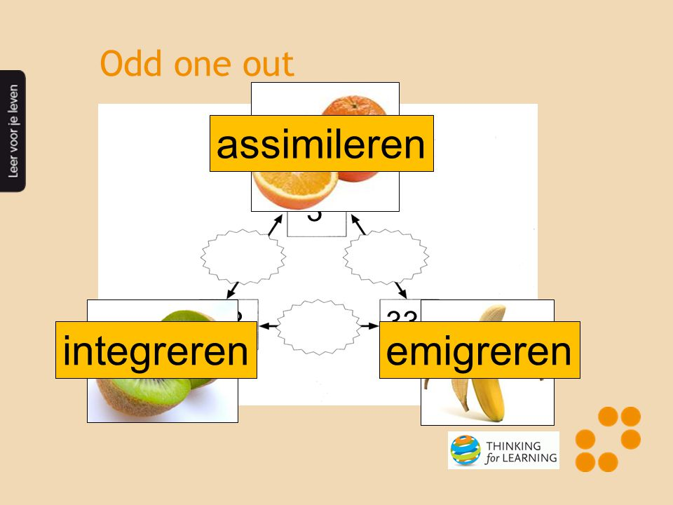 assimileren integreren emigreren Odd one out 3 33 333