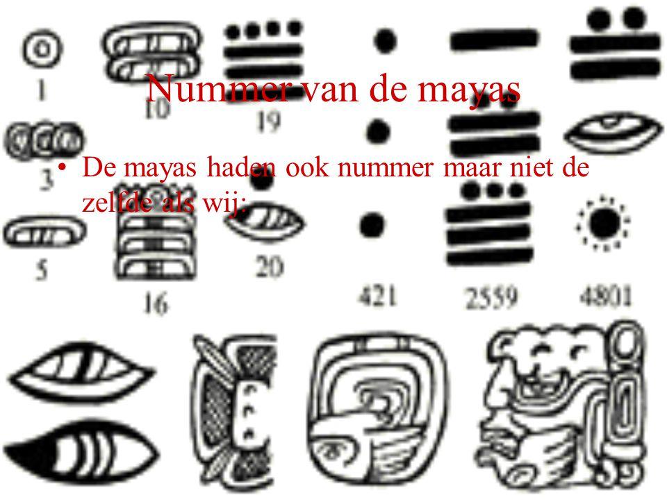 Nummer van de mayas De mayas haden ook nummer maar niet de zelfde als wij: