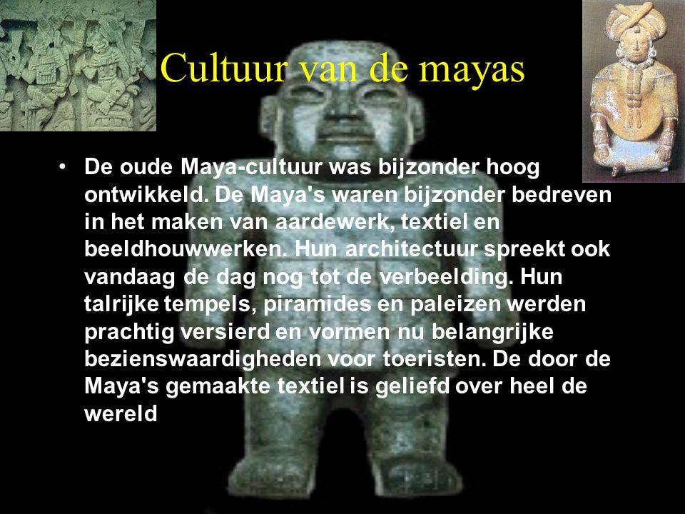Cultuur van de mayas