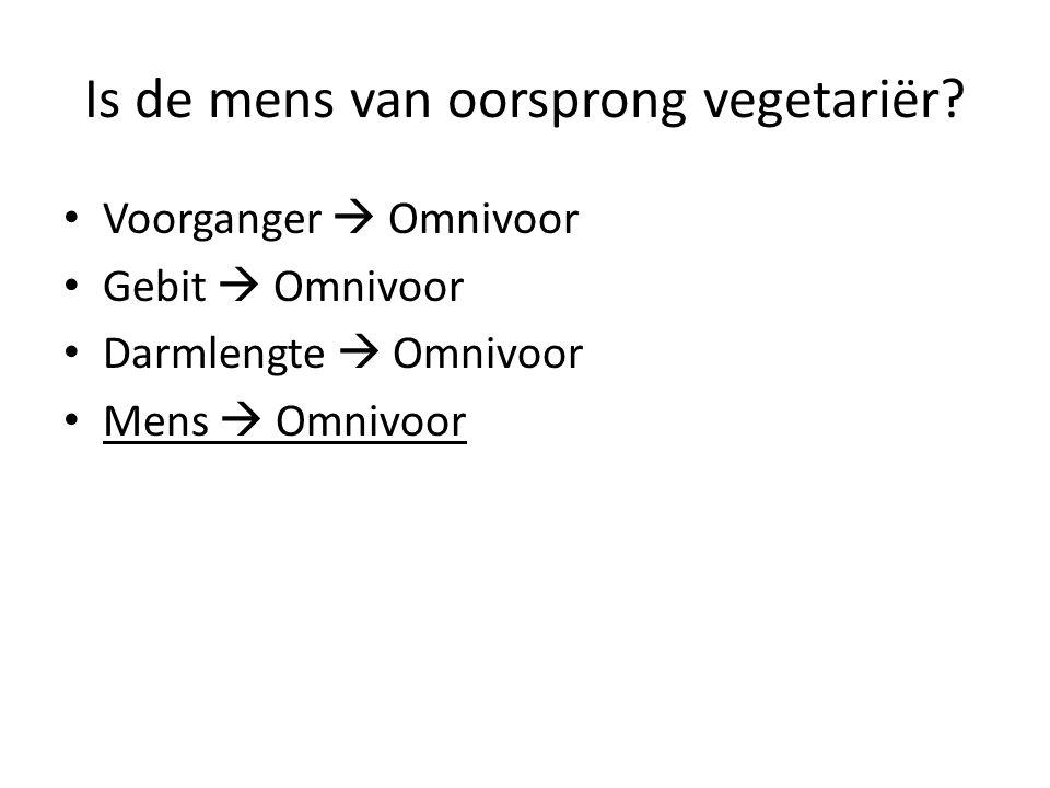 Is de mens van oorsprong vegetariër