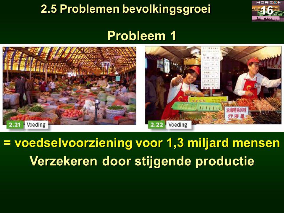 Probleem 1 Verzekeren door stijgende productie