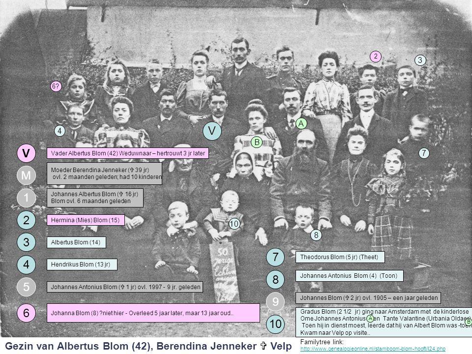 2 3. 6 A. V. 4. B. V. Vader Albertus Blom (42) Weduwnaar – hertrouwt 3 jr later. 7. Moeder Berendina Jenneker ( 39 jr)