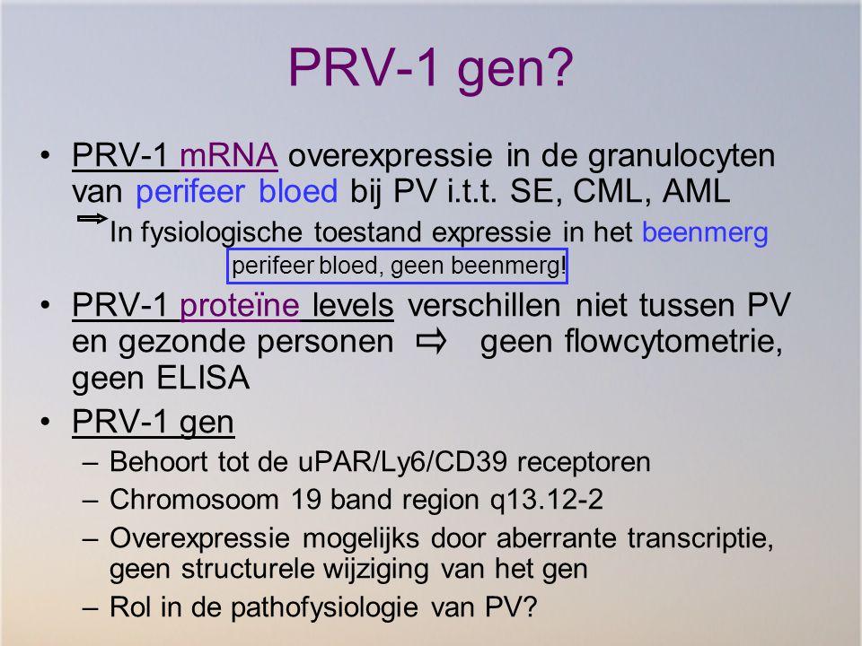 PRV-1 gen PRV-1 mRNA overexpressie in de granulocyten van perifeer bloed bij PV i.t.t. SE, CML, AML.