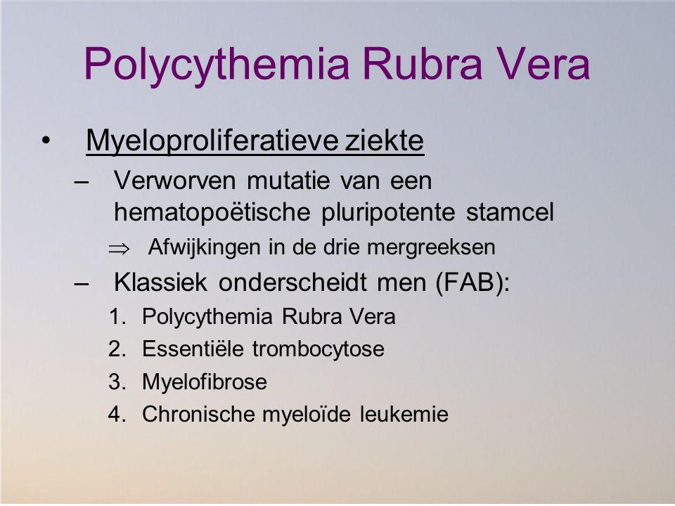 Polycythemia Rubra Vera