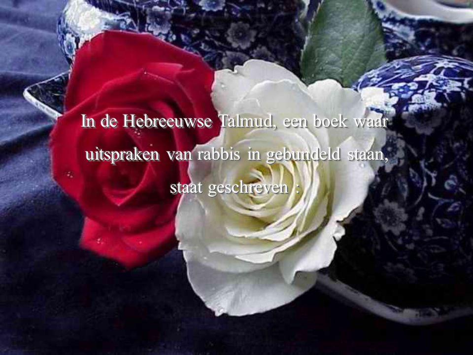 In de Hebreeuwse Talmud, een boek waar