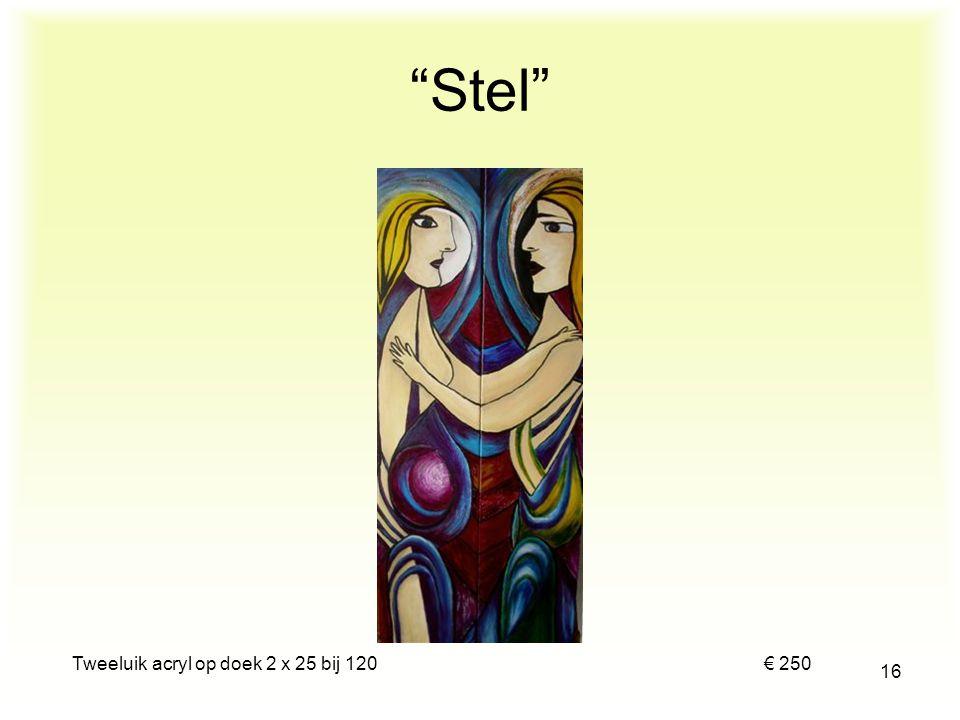 Tweeluik acryl op doek 2 x 25 bij 120 € 250