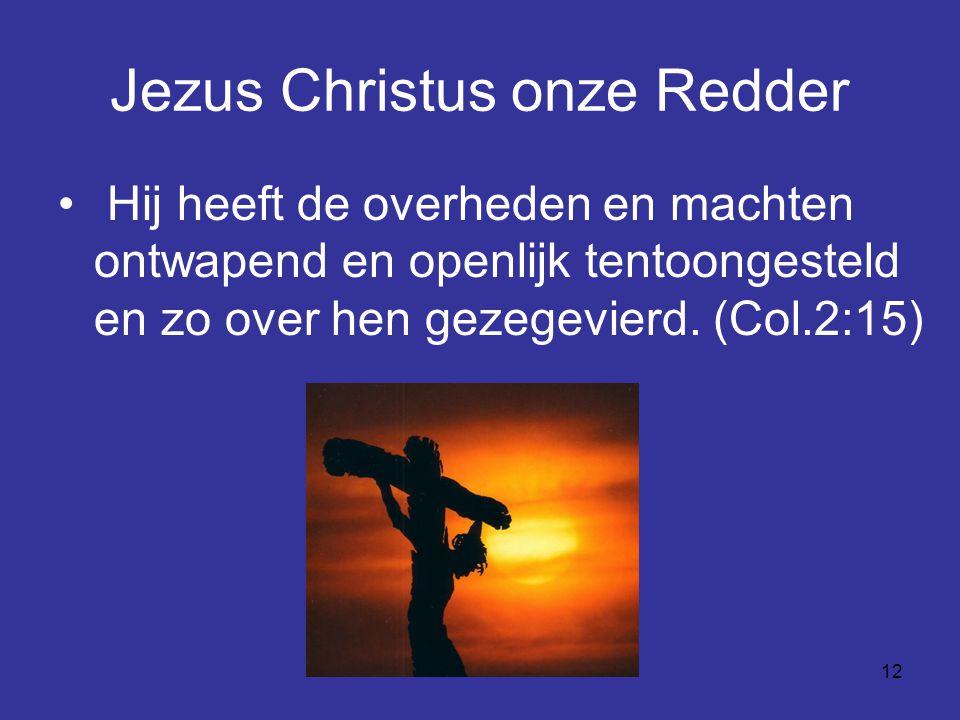 Jezus Christus onze Redder