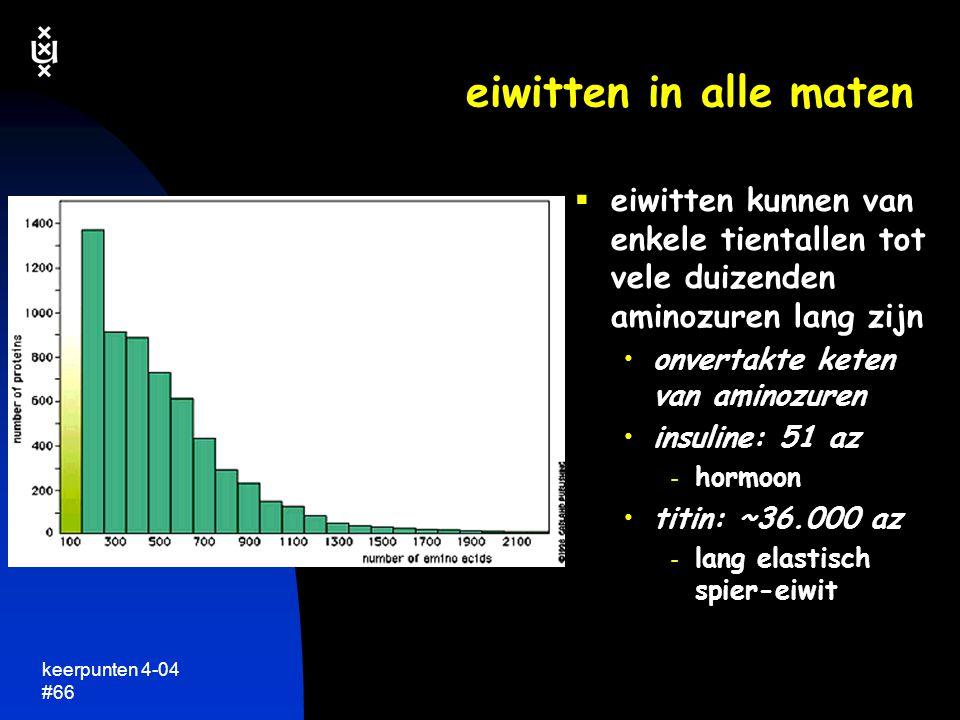 eiwitten in alle maten eiwitten kunnen van enkele tientallen tot vele duizenden aminozuren lang zijn.