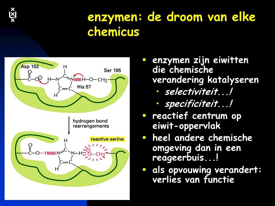 enzymen: de droom van elke chemicus