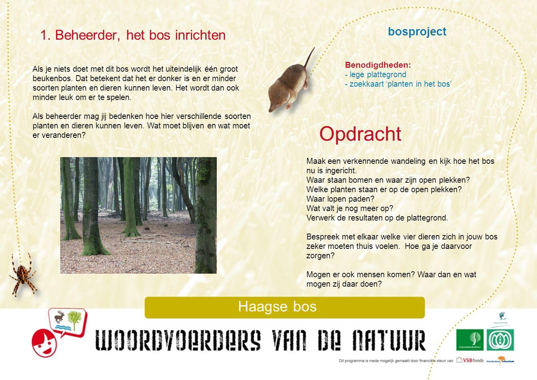 Opdracht 1. Beheerder, het bos inrichten bosproject Haagse bos