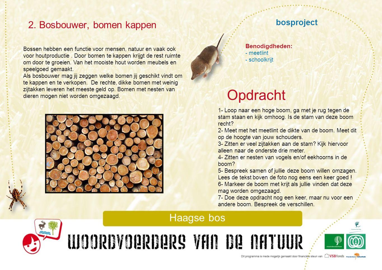 Opdracht 2. Bosbouwer, bomen kappen bosproject Haagse bos