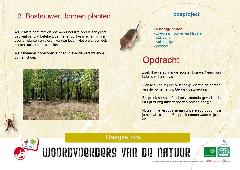 Opdracht 3. Bosbouwer, bomen planten Haagse bos bosproject